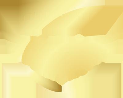 OWLCARS